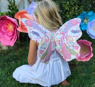 IMG_2768 butterfly wings